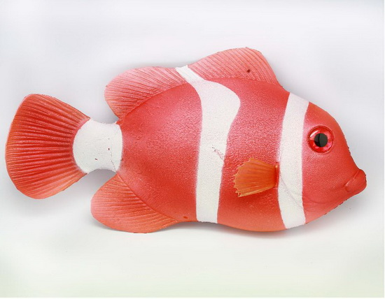 Big Tomato Clownfish  Big Red Clownfish MH05219